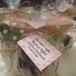 Caramel and Apple Gift Bag